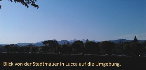 IMAG0165_Lucca