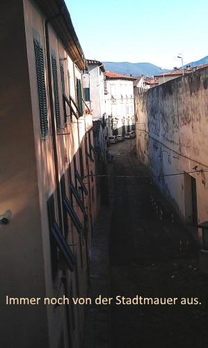 IMAG0167_Lucca