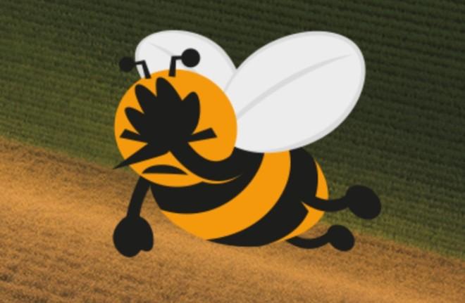 Biene_UmweltinstitutMuenchen