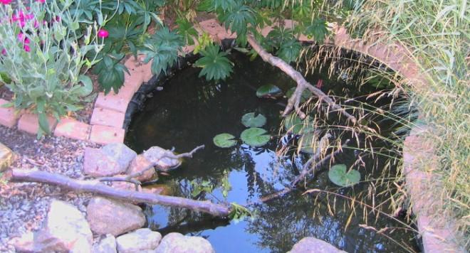 midt juli 2005 036 blog