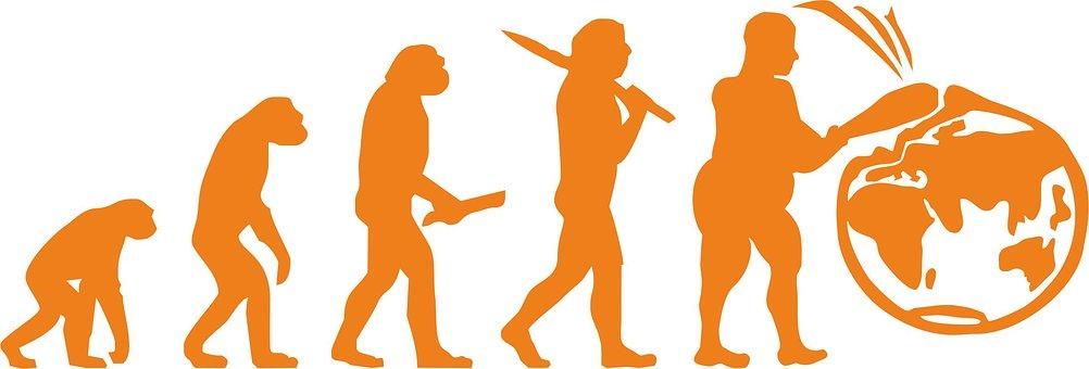 evolution-2305142__340